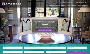 Homestead - Estate Agents Website Template